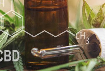 Les propriétés médicales du CBD
